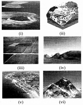 RBSE Solutions for Class 7 Social ScienceChapter 1 Biosphere and Landscape 2
