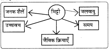 RBSE Solutions for Class 8 Social Science Chapter 4 भूमि संसाधन और कृषि 1