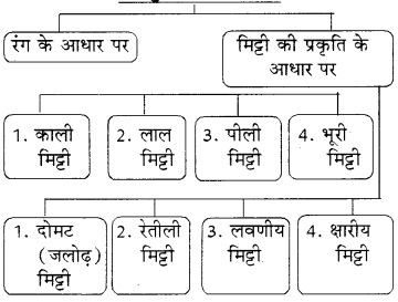 RBSE Solutions for Class 8 Social Science Chapter 4 भूमि संसाधन और कृषि 3