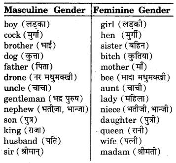 RBSE Class 7 English Vocabulary Gender 1