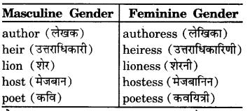 RBSE Class 7 English Vocabulary Gender 3