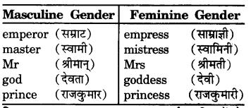 RBSE Class 7 English Vocabulary Gender 5