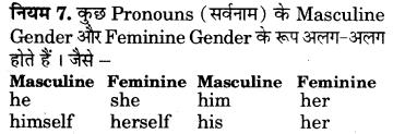RBSE Class 7 English Vocabulary Gender 8
