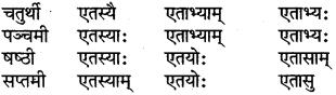 RBSE Class 6 Sanskrit परिशिष्टम् 22