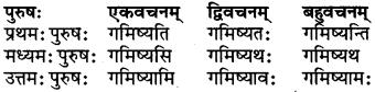 RBSE Class 6 Sanskrit परिशिष्टम् 29