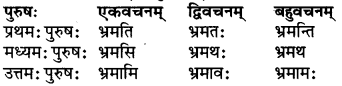 RBSE Class 6 Sanskrit परिशिष्टम् 43