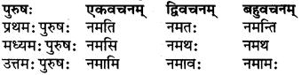 RBSE Class 6 Sanskrit परिशिष्टम् 49