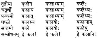 RBSE Class 6 Sanskrit परिशिष्टम् 5