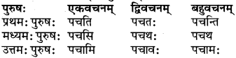 RBSE Class 6 Sanskrit परिशिष्टम् 53