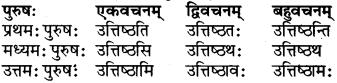RBSE Class 6 Sanskrit परिशिष्टम् 62