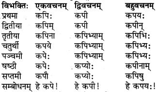 RBSE Class 6 Sanskrit परिशिष्टम् 7