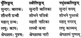 RBSE Class 6 Sanskrit व्याकरण विशेषण-प्रकरणम् 1
