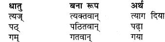 RBSE Class 7 Sanskrit व्याकरण विशेषण प्रकरणम् 11