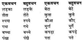 RBSE Class 9 Hindi व्याकरण वचन 1