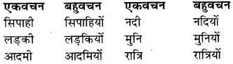 RBSE Class 9 Hindi व्याकरण वचन 10
