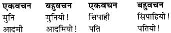 RBSE Class 9 Hindi व्याकरण वचन 11