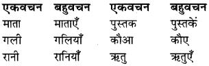 RBSE Class 9 Hindi व्याकरण वचन 12