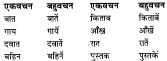 RBSE Class 9 Hindi व्याकरण वचन 2