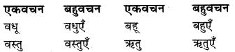 RBSE Class 9 Hindi व्याकरण वचन 5