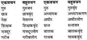 RBSE Class 9 Hindi व्याकरण वचन 7