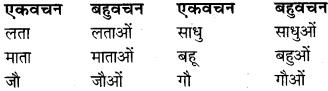 RBSE Class 9 Hindi व्याकरण वचन 9