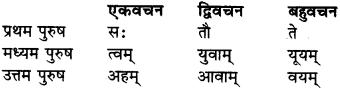 RBSE Class 9 Sanskrit व्याकरण कारक-प्रकरणम् 3