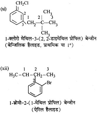 RBSE Solutions for Class 12 Chemistry Chapter 10 हैलोजेन व्युत्पन्न image 246