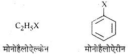 RBSE Solutions for Class 12 Chemistry Chapter 10 हैलोजेन व्युत्पन्न image 36