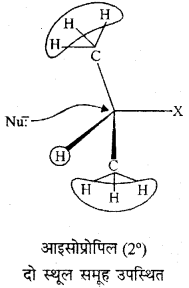 RBSE Solutions for Class 12 Chemistry Chapter 10 हैलोजेन व्युत्पन्न image 59