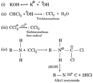 RBSE Solutions for Class 12 Chemistry Chapter 10 Halogen Derivatives Short Q6 mechanism