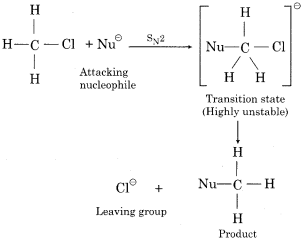 RBSE Solutions for Class 12 Chemistry Chapter 10 Halogen Derivatives long 4b (vii) 2