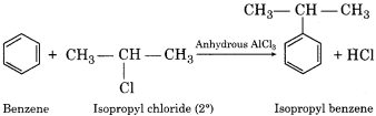 RBSE Solutions for Class 12 Chemistry Chapter 10 Halogen Derivatives long 7 (v)
