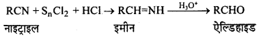 RBSE Solutions for Class 12 Chemistry Chapter 12 ऑक्सीजन युक्त क्रियात्मक समूह वाले यौगिक (भाग-2) image 4
