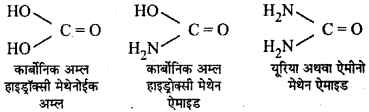 RBSE Solutions for Class 12 Chemistry Chapter 13 नाइट्रोजन युक्त क्रियात्मक समूह वाले कार्बनिक यौगिक image 22