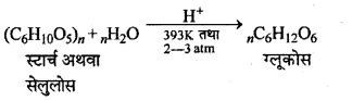 RBSE Solutions for Class 12 Chemistry Chapter 14 जैव-अणु