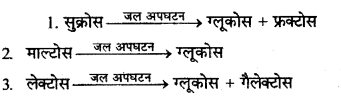 RBSE Solutions for Class 12 Chemistry Chapter 14 जैव-अणु image 8