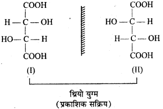 RBSE Solutions for Class 12 Chemistry Chapter 16 त्रिविम रसायन image 25