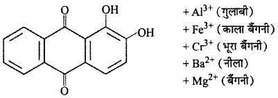 RBSE Solutions for Class 12 Chemistry Chapter 17 दैनिक जीवन में रसायन image 54