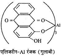 RBSE Solutions for Class 12 Chemistry Chapter 17 दैनिक जीवन में रसायन image 10