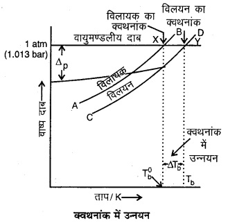 RBSE Solutions for Class 12 Chemistry Chapter 2 विलयन image 26