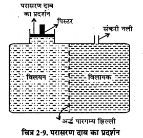 RBSE Solutions for Class 12 Chemistry Chapter 2 विलयन image 34