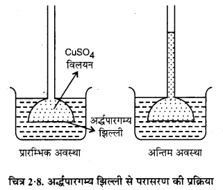 RBSE Solutions for Class 12 Chemistry Chapter 2 विलयन image 33