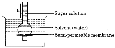RBSE Solutions for Class 12 Chemistry Chapter 2 Solution image 9