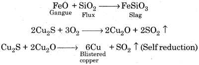RBSE Solutions for Class 12 Chemistry Chapter 6 Principles and Processes of Isolation of Elements image 14