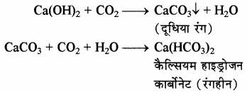 RBSE Solutions for Class 11 Chemistry Chapter 10 s-ब्लॉक तत्त्व img 18