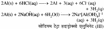 RBSE Solutions for Class 11 Chemistry Chapter 11 p - ब्लॉक तत्त्व img 3