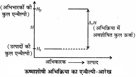 RBSE Solutions for Class 11 Chemistry Chapter 6 ऊष्मागतिकी img 7
