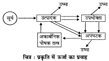 RBSE Solutions for Class 11 Biology Chapter 27 जीवन का अभिप्राय img-3