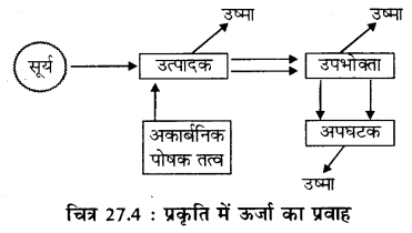 RBSE Solutions for Class 11 Biology Chapter 27 जीवन का अभिप्राय img-4