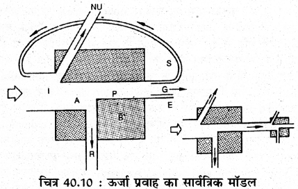 RBSE Solutions for Class 11 Biology Chapter 40 पारिस्थितिक तंत्र img-10